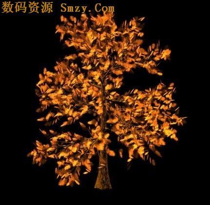金色的摇钱树模型