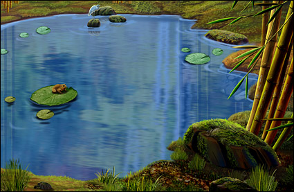 池塘,荷叶,青蛙