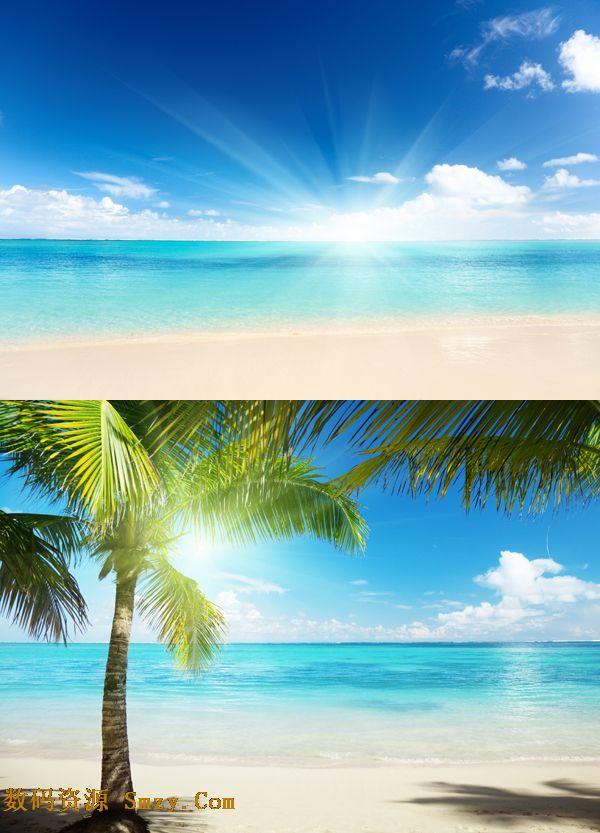 一组高清海边风景图标素材,以沙滩和大海为主题,同时还有椰树.