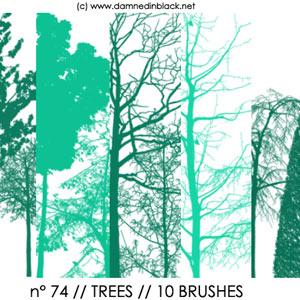 PHOTOSHOP树木笔刷下载