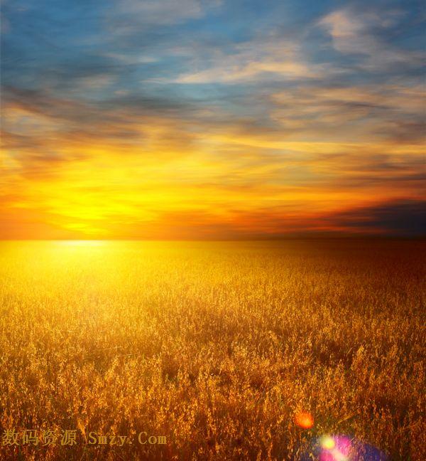素材 麦田/这是一张高清实拍自然风光素材,蓝天白云,阳光照耀下的金色...