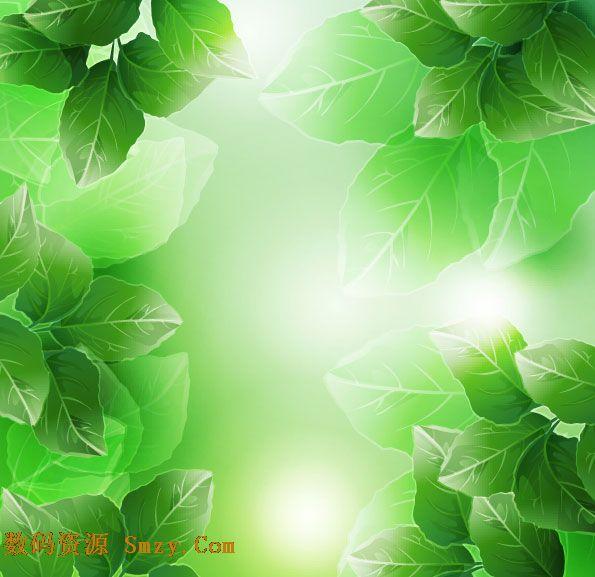 手绘树叶主题背景. 阳光绿叶背景矢量