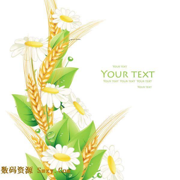 鲜花绿叶麦穗背景矢量图素材