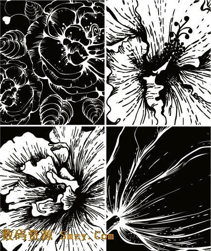 平面黑白植物图手绘