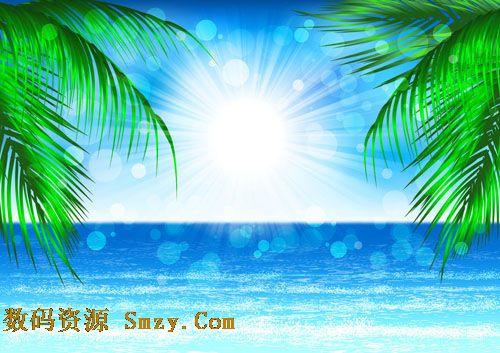 海边椰树浪花风景. 椰树海滩背景图片. 儿童摄影模板 夏日.