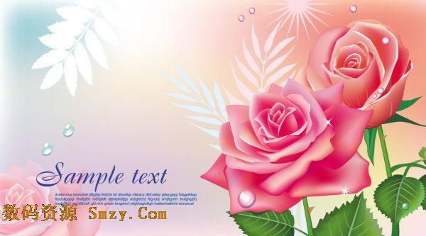 精美玫瑰花图片背景矢量素材