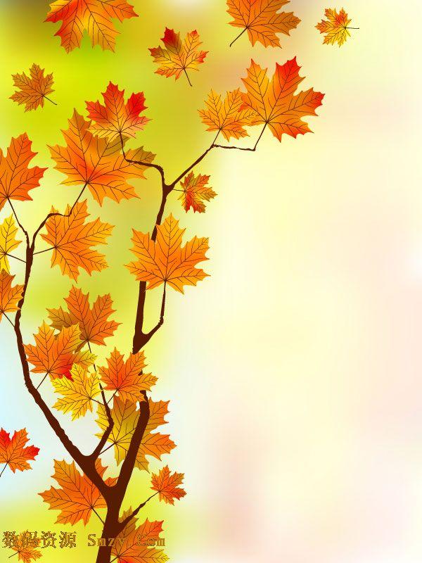 素材,幻彩般的背景配以枫树的树干树枝和那挂在枝头的红色枫叶背景图
