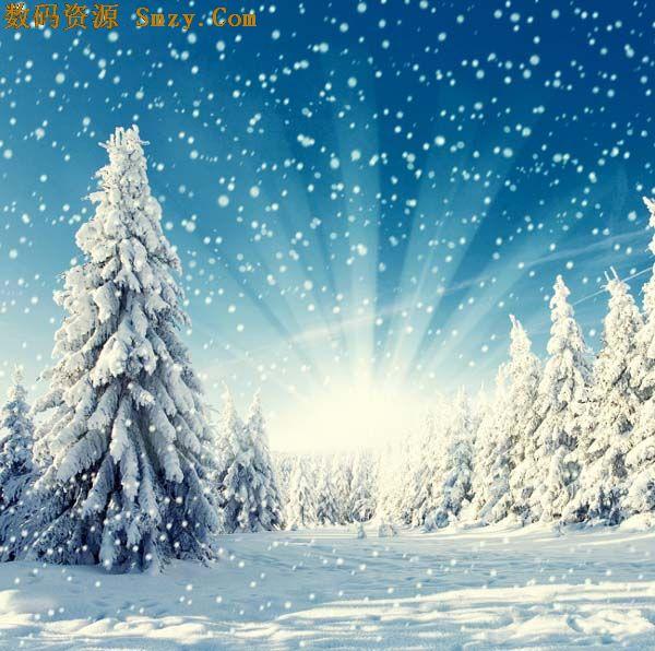 冬日唯美飘落雪花背景高清图片下载