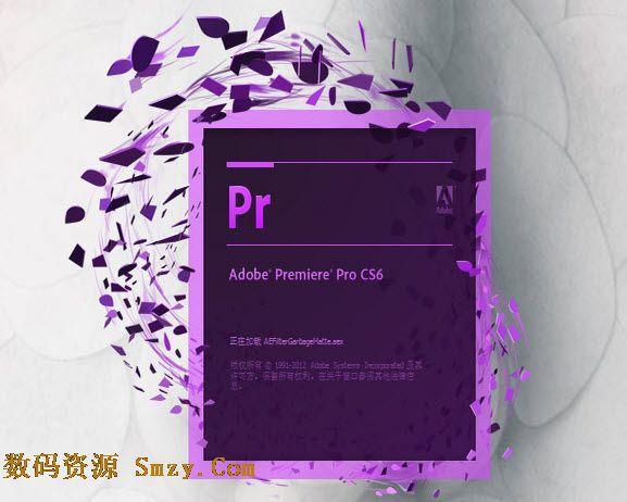 Premiere Pro CS6�������