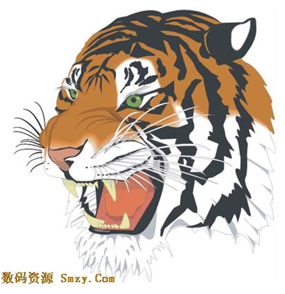 Ɖ�绘动物之老虎头像图片矢量素材下载 ƕ�码资源网