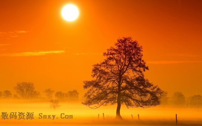 首页 资源下载 平面素材 精美图片 风景 > 唯美夕阳晚霞树木美景高清