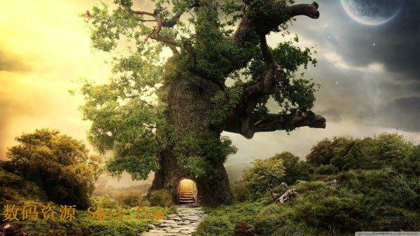 首页 资源下载 平面素材 精美图片 风景 > 虚幻神话中的梦幻树屋高清