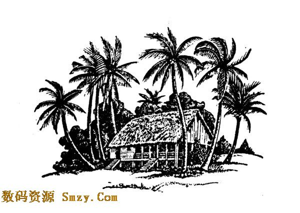 黑白色调椰树房子图片矢量素材