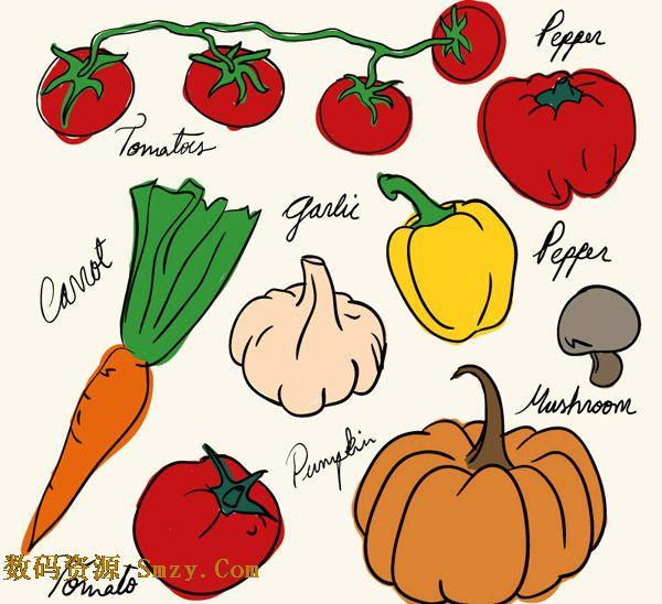 手绘彩色蔬菜设计矢量素材