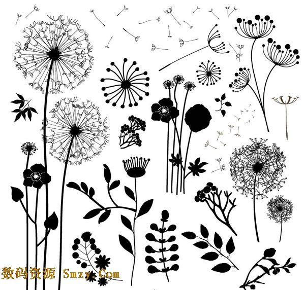简约黑白植物蒲公英剪影矢量素材