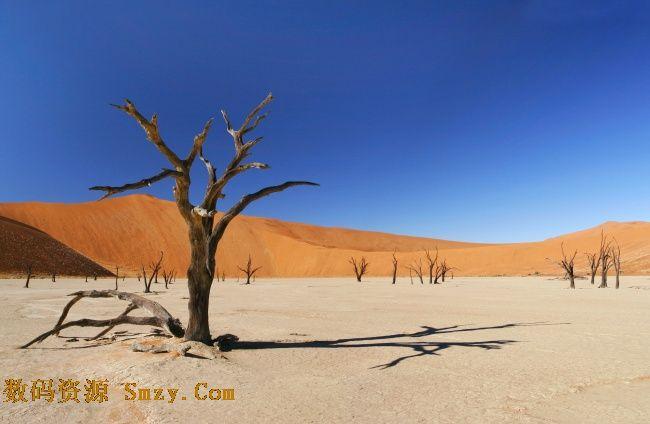 首页 资源下载 平面素材 精美图片 风景 > 萧条干枯地貌之沙漠高清