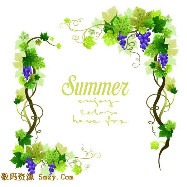清新夏季葡萄藤边框设计矢量素材