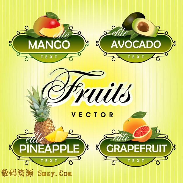 创意清新花边水果标签设计矢量素材