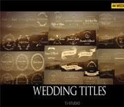 44个欧式唯美婚礼新人姓名标题动画AE模板素材