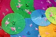 缤纷多彩中国风油纸伞摄影高清图片