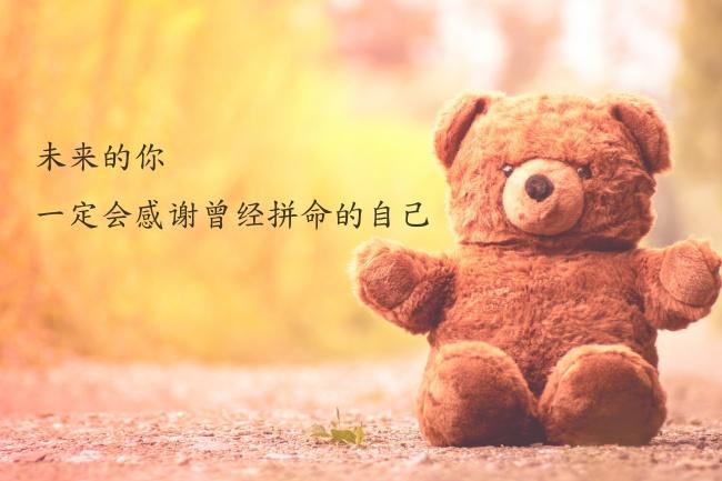 字唯美毛绒熊背景高清图片展示的就是唯美非主流背景