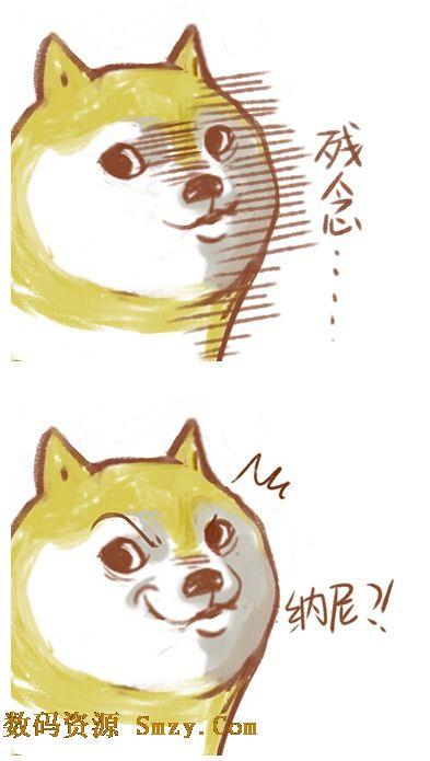 doge搞笑表情包 (恶搞的qq表情包)