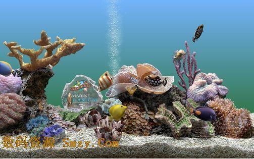 Marine Aquarium 3下载(热带鱼水族箱屏幕保护