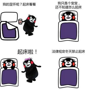 天冷了的熊本熊表情包下载(qq表情)