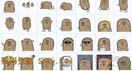 金动态猫屎QQ表情(猫屎表情帝)免费版馆长做界面包自己微表情信图片