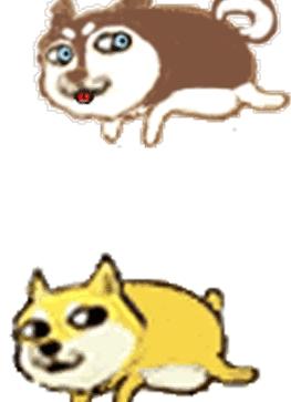 神烦狗表情包