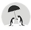 未雨天气安卓版(手机天气预报软件) v1.0 Android版