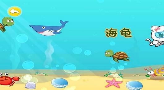 各异的海洋生物,有体型庞大的鲨鱼