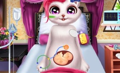 帮助怀孕的萌宠猫咪接生小宝贝,宝贝出生后帮助小宝贝做产后护理