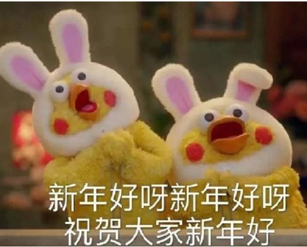 鹦鹉兄弟拜年表情包(2017春节qq表情包) 无水印春节版图片