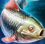 唯美钓鱼苹果版(真实钓鱼体验) v1.59 手机iOS版