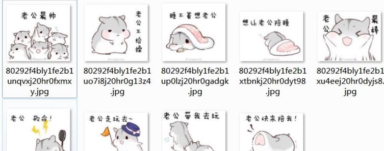 但是小编不得不说,仓鼠表情包中可爱的松鼠真的是太可爱了!