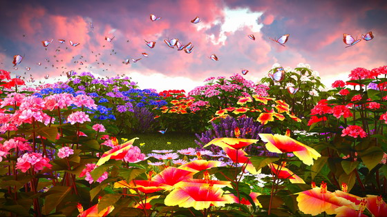 tag 标签: 推荐软件:唯美七彩玫瑰花高清图片 流连于花草丛中的蝴蝶