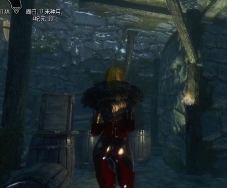 上古卷轴5女王骷髅服装MOD下载 上古卷轴5游戏补丁 v2.0 免费最新版