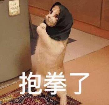 抱拳猫表情包(可爱有趣的聊谈) 高清无水印版