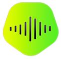 KeepVid Music苹果电脑版