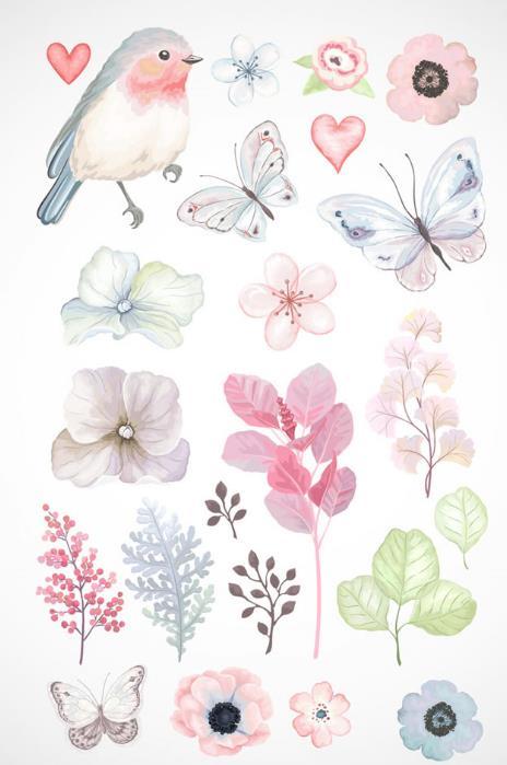 水彩绘呆萌动物与植物设计矢量素材