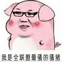 你这只猪表情的qq搞笑图交友图片