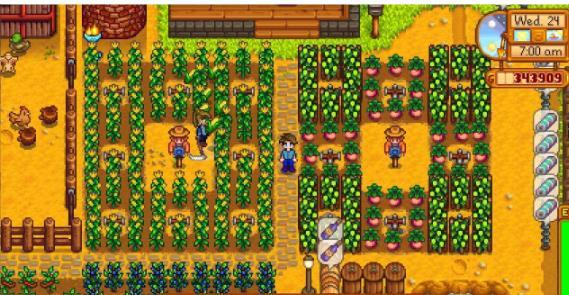 星露谷物语是一款开放的乡村生活模拟经营游戏,游戏中玩家扮演继承了爷爷农场的主角开阔和经营整座小牧场。星露谷物语大型农场MOD中增加大量和发展升级的建筑和地图,可搜集的农作物更加的丰富了,快下载星露谷物语大型农场MOD让你的农作物更加的充实吧!喜欢的朋友不要错过了哦。