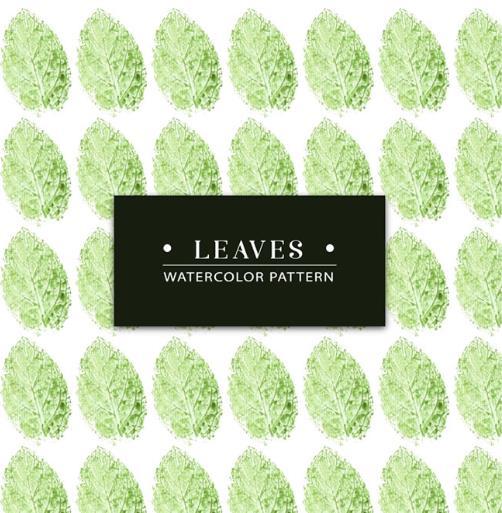 彩绘椭圆形绿叶植物矢量图