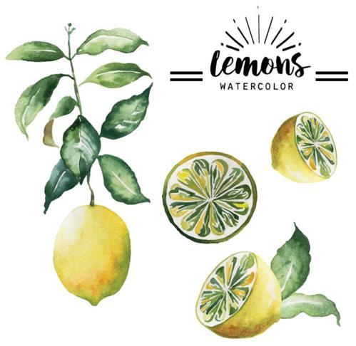 彩绘水果柠檬设计矢量素材就是以柠檬为主题设计的