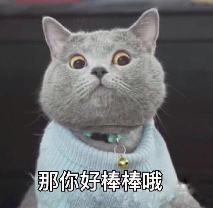 猫咪突然想起表情包(超级的萌萌哒) 最新版图片