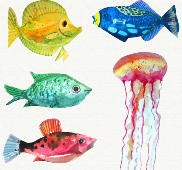 海洋生物种类繁多小编为设计师们带来的这款水彩绘海洋生物和鱼类矢量素材中就设计了5款不同的海洋生物,基本都是以手绘彩色的热带鱼为主要元素,其中还有大型的水母造型设计,生活在海洋中的鱼群颜色可是非常艳丽的,5款生物都有自己不同的颜色设计,需要就来下载吧。