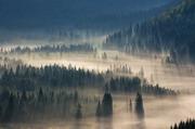 山林中清晨雾气景色摄影图片