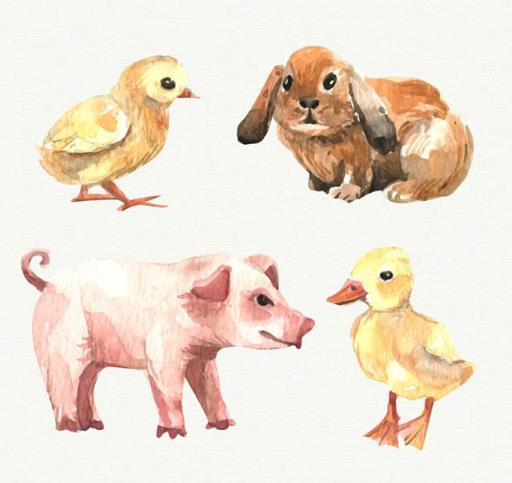 小编为设计师们准备的这款彩绘农场动物矢量图片素材中可以是农场中养殖的动物为主题设计的,其中共计4款不同类型的动物设计,其中包括鸡仔,兔子,猪,鸭子等动物,都是以水彩绘的形式展现给大家的,背景以纯白色为主,需要养殖的动物题材就来数码资源网下载吧。