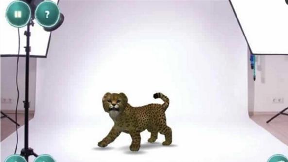 小动物岛安卓版(陪伴动物们一起玩耍) v1.0 最新手机版